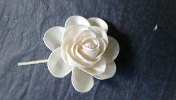 Sola Lotus