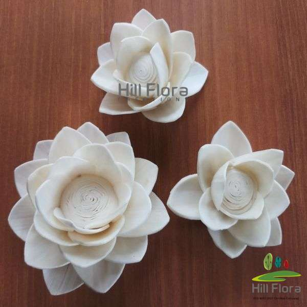 7780 PREMIUM FLOWER(100PCS=1QTY)