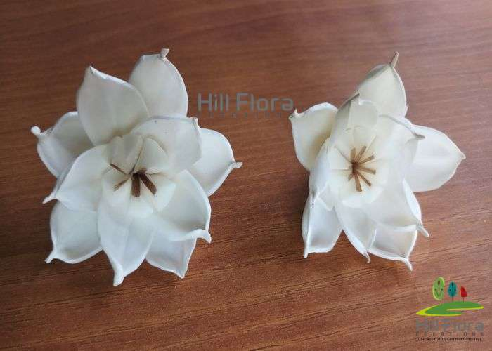 77166 PREMIUM FLOWER(100PCS=1QTY)