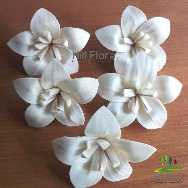 7793 PREMIUM FLOWER(100PCS=1QTY)