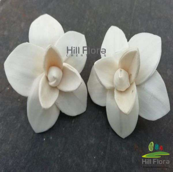 7731 PREMIUM FLOWER(100PCS=1QTY)