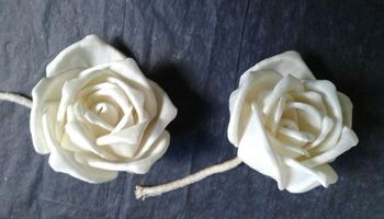 Sola Rose