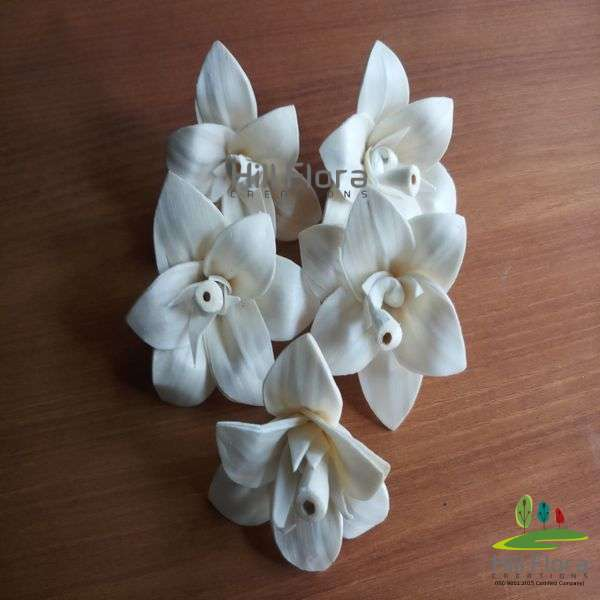 77100 PREMIUM FLOWER(100PCS=1QTY)